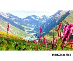 Valley of Flowers Trek - Trek in Uttarakhand