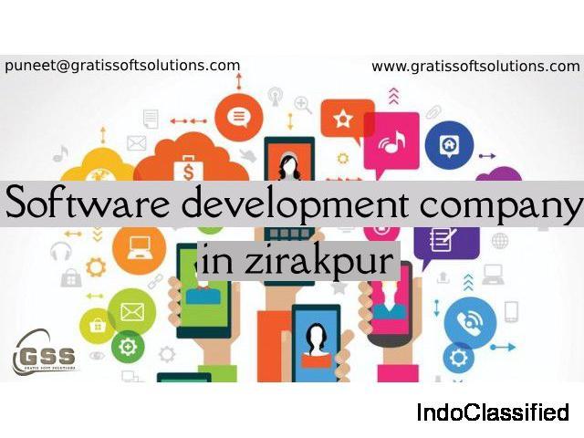 software development service in zirakpur