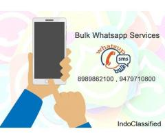 Best Bulk Whatsapp Marketing