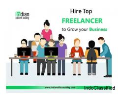 Freelance Digital Marketing Consultant - Indian Silicon Valley