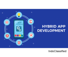 Mobile App Development With Native And Hybrid App Development