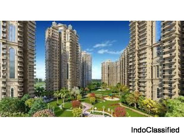 Ajnara Ambrosia in Noida | Flats in noida