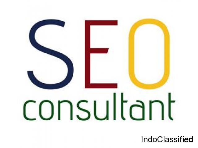 Hire SEO Expert & Consultant in Delhi vipin kumar 9891605905