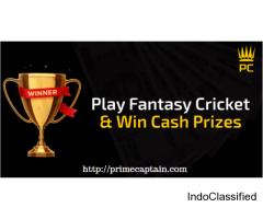 Fantasy cricket - ICC fantasy cricket world cup 2019