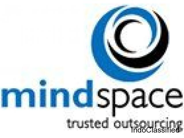 CPA's Services, Tax Return Preparation Services India – Mindspace Outsourcing