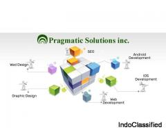 Pragmatic solution Inc-Website Development In Coimbatore