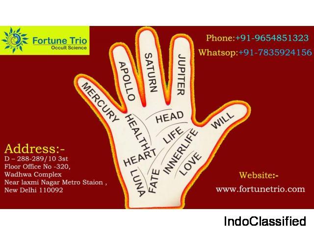 Best Palmist in Delhi NCR