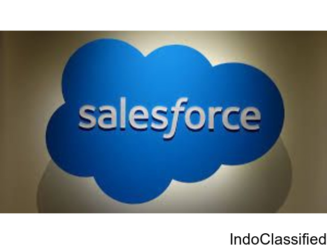 Salesforce Online Videos by using Security