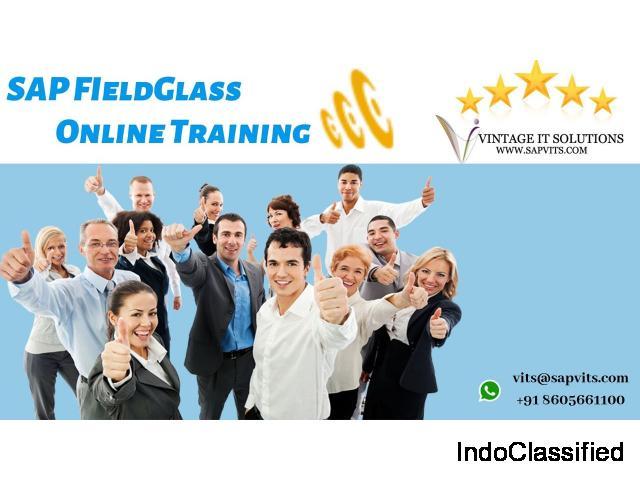 SAP Fieldglass Training in Hyderabad