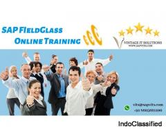 SAP Fieldglass Training in Hyderabad