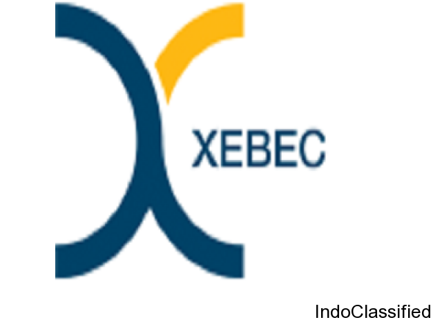 Social media marketing company | Xebec Communications