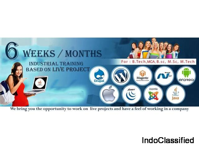 Infosif Best Industrial Training in Mohali