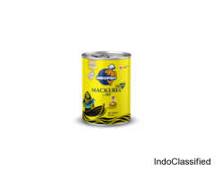 Canned Mackerel | Mackerel in Oil | Canned Mackerel India - Indofish
