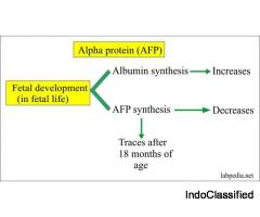 Alpha Fetoprotein from ACI Diagnostic