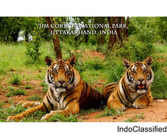 Jim Corbett Online Hotel Booking for Best Price Available