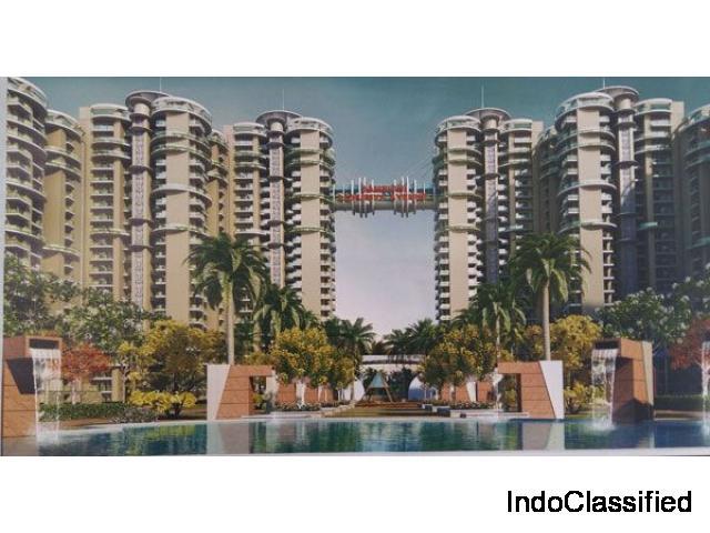 Luxuriya Avenue 3 BHK Apartments in Noida Sec 150 Call 7702-770-770