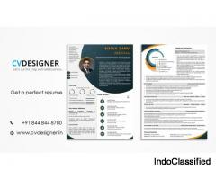 Professional Resume Writing Service - CV Designer