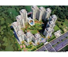 Luxuriya Avenue In Noida Sec 150 Call 7702_770_770