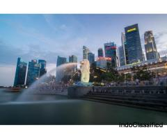 Book Singapore Honeymoon Package