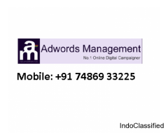 Adwords Management in Mumbai PPC Service Ahmedabad Bengaluru Delhi