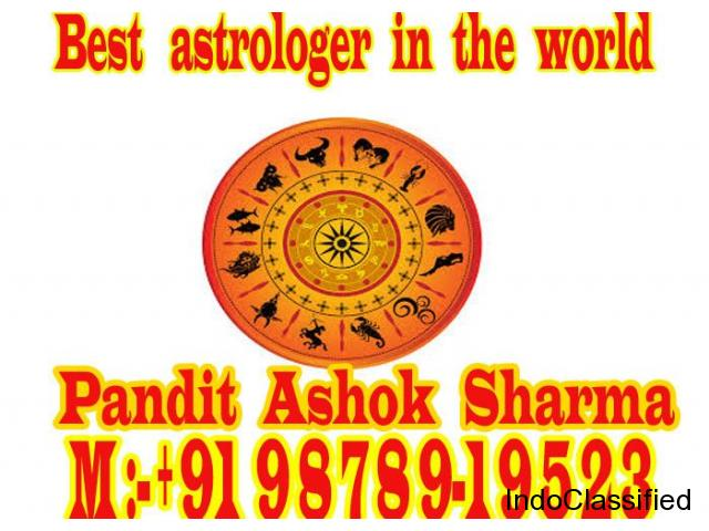 best astrologer in the world +91 9878919523
