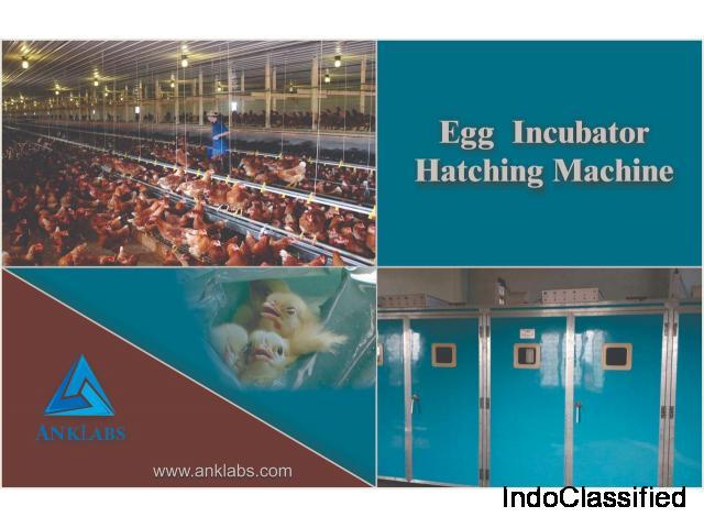 ANkLabs - Egg Incubator Supplier in Delhi