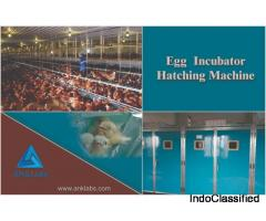 ANkLabs - Egg Incubator Supplier in Delhi
