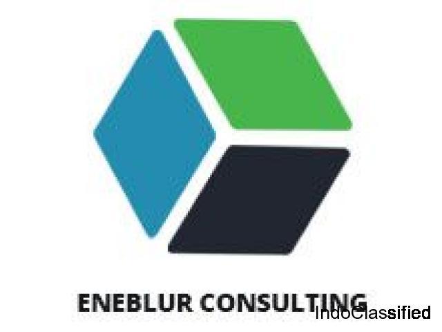 Eneblur Consulting -Professional web design company