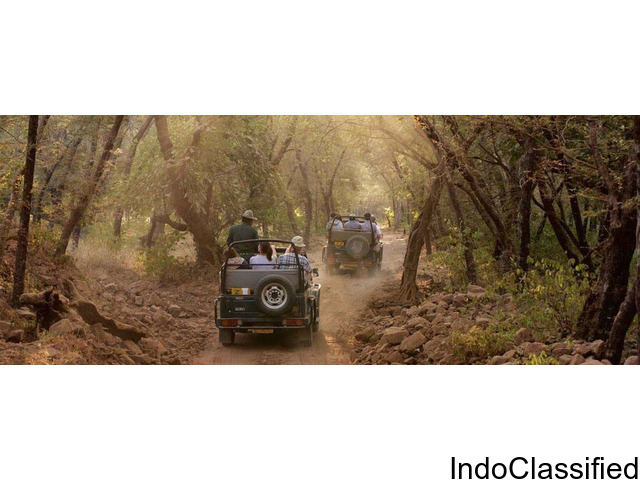 Jim Corbett National Park Dhikala Online Booking Uttarakhand India