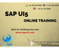 SAP UI5 Online Training in Pune