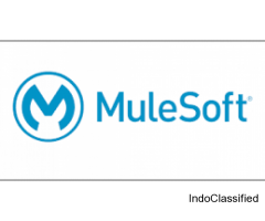 mulesoft esb training in hyderabad