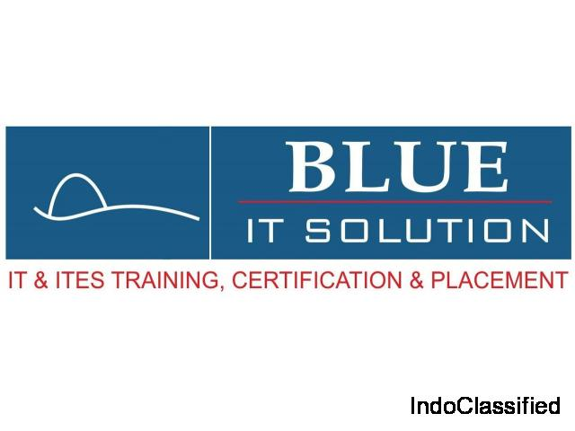 BLUE IT SOLUTION: Courses on |Medical Transcription| |Medical coding| |Medical billing|