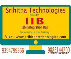 IIB Online And Classroom Training