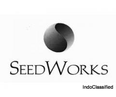 cotton seeds company in india