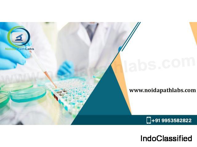 Noida Path Labs - Best Pathology In Noida