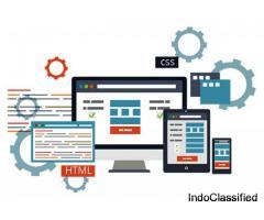 Web Designing Company in Zirakpur