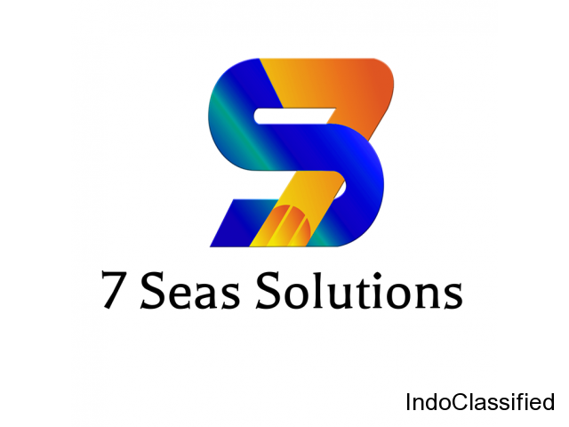 7 Seas Solutions - The Online Marketing Agency in Pune