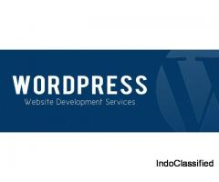WordPress Website Development Company in Delhi