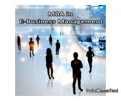MBA in E Business Management
