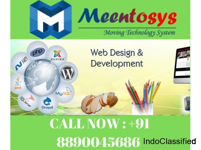 Website Designing Company , Website Development India