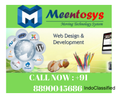 Website Designing Company , Website Development India