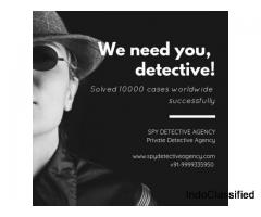 Professional Detectives in India