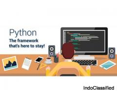 Python Development Company - Machine Learning and Web Applications
