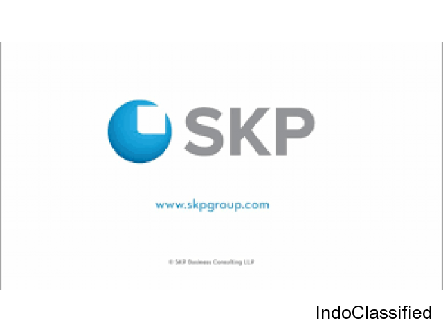 Business Consulting Services - skpgroup.com