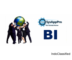 SAP BI Training in Noida