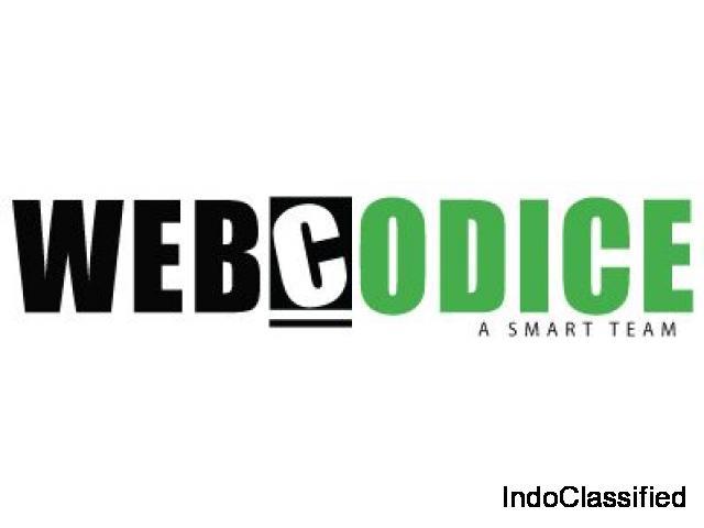 web developing and designing