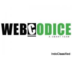 web developing and designing