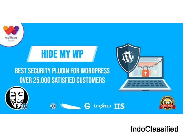 Accomplish your website security needs with WordPress security plugin