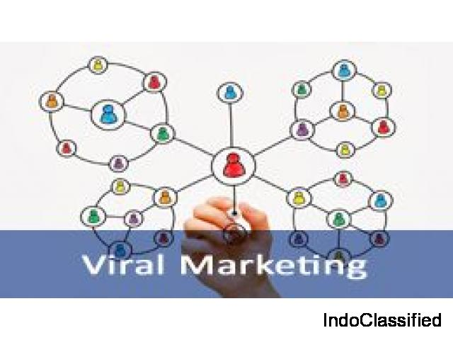 Short Term Viral Marketing Training Course
