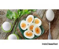 Egg diet plan- Does it work? Is it safe?